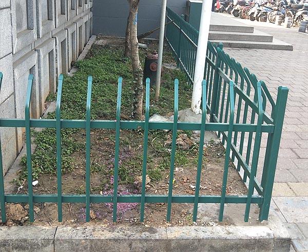 绿化带护栏.jpg